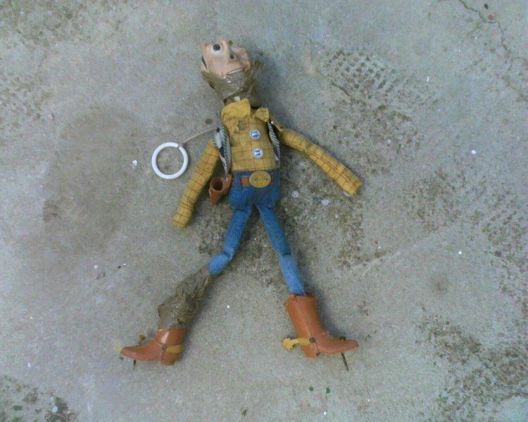 Woody 3.jpg